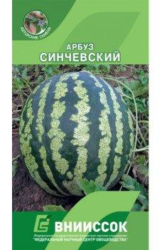 Арбуз Синчевский