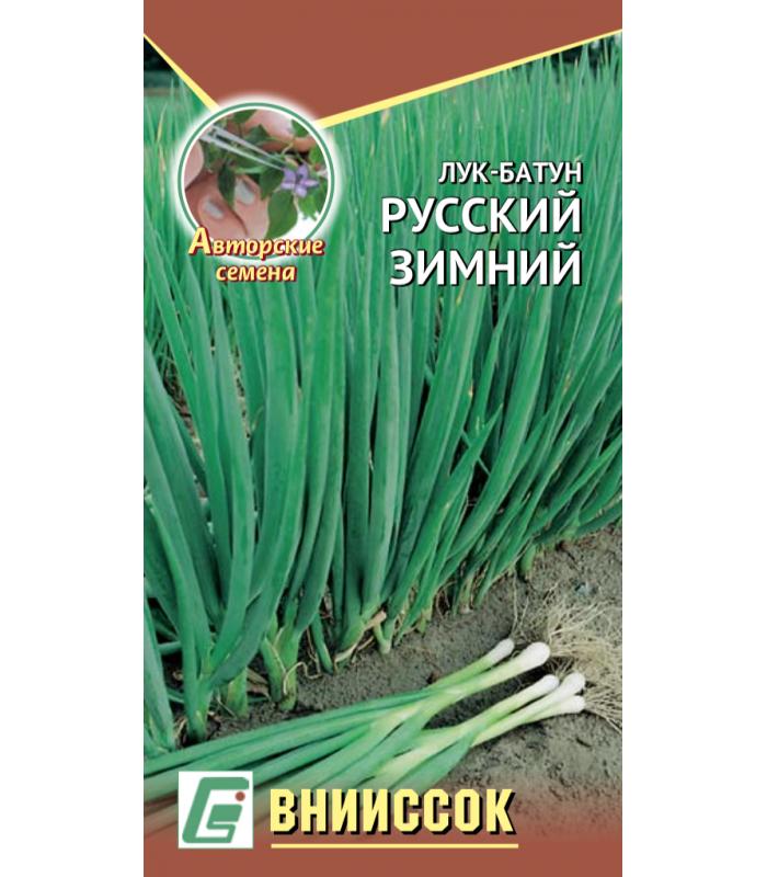 Лук батун Русский зимний